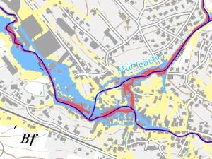 Die Analyse des Hangwasserabflusses mit HYDRO_AS-2D ermöglicht die Lokalisierung von Gefahrenzonen (rot eingefärbt).