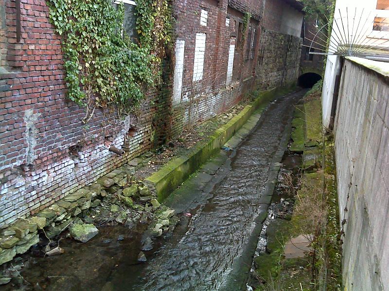 Mirker Bach - Das an ihm bestehende Überflutungsrisiko haben wir untersucht.
