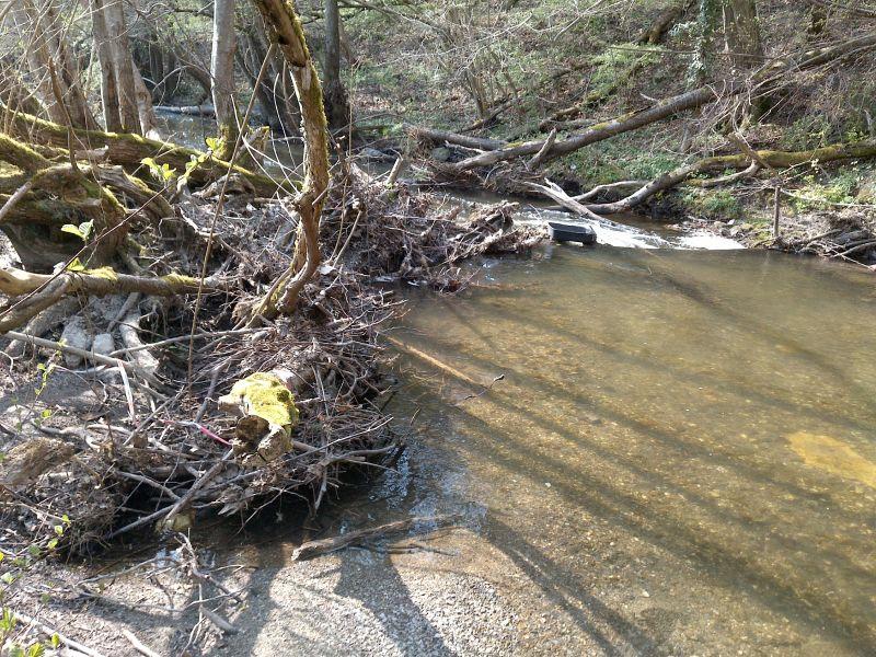 Hochwassergefahr durch Treibgut