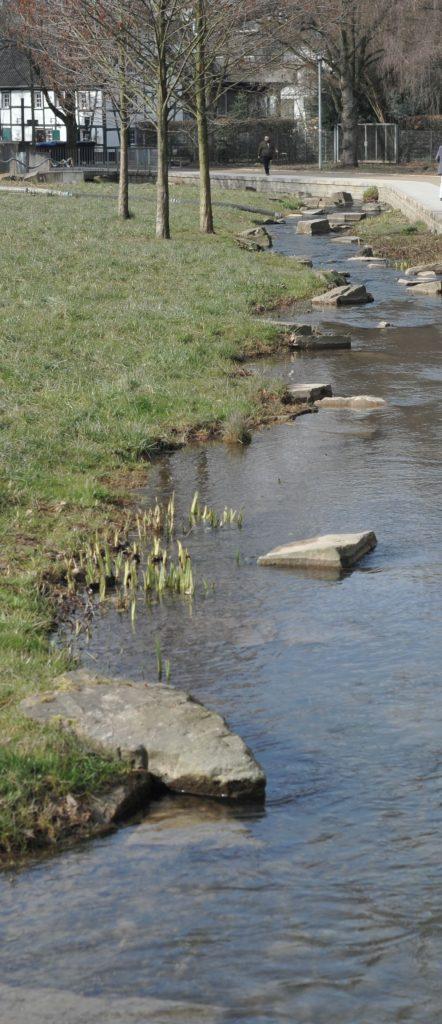 Klimaanpassungskonzept für den Rheinisch-Bergischen Kreis